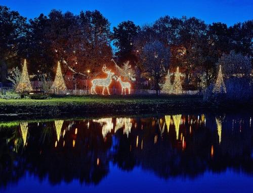 04. – 13.12.2020 Weihnachtsmarkt im Tierpark Nordhorn