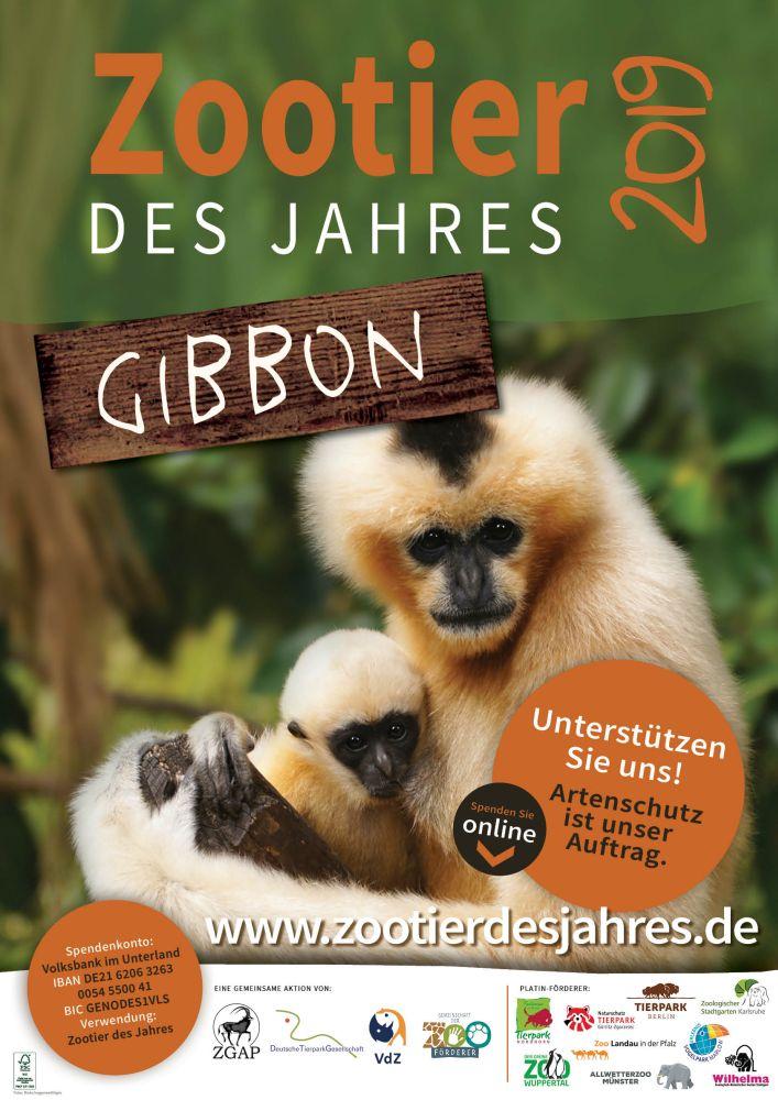 Zootier des Jahres 2019 - Plakat - Tierpark Nordhorn