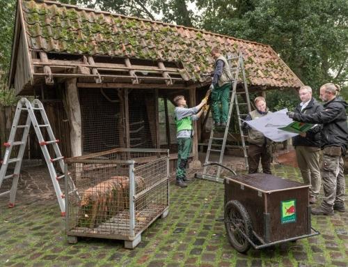 Vorbereitungen zum Bau der Leopardenanlage beginnen – Baufeld wird vorbereitet