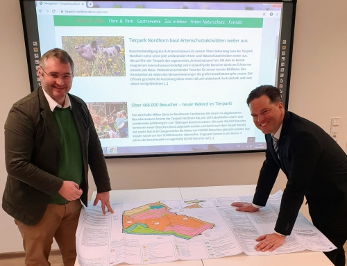 Tierparkerweiterung erhält Planungsgrundlage
