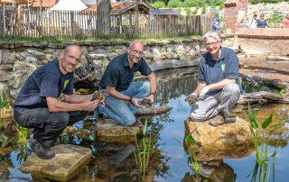 Tierpark Nordhorn - Einzug der Europäischen Sumpfschildkröte