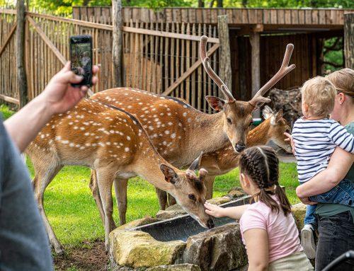 Tierpark Nordhorn deutschlandweit die Nummer 1