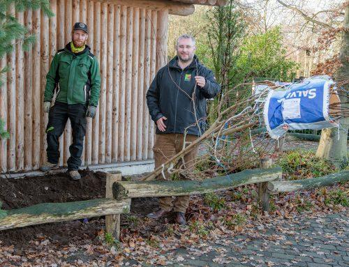 Ein neuer Nachbar für Waldbisons, Pekaris und Präriehunde im Tierpark Nordhorn
