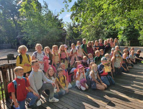 """Sünte-Marien Schule Wietmarschen wird """"Bisonpate"""""""