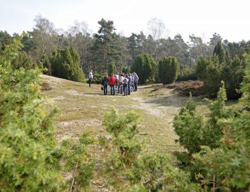Mit dem Ranger durch das Naturschutzgebiet Tillenberge